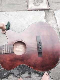 Squoe 1883 Acoustic Guitar with amp.(Fishman)