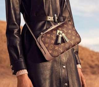 New LV sling bag or camera bag