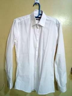 Primark Formal/ Dress Shirt