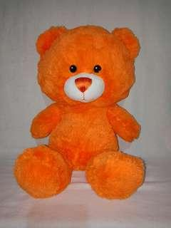 Teddy Bear (Build A Bear)