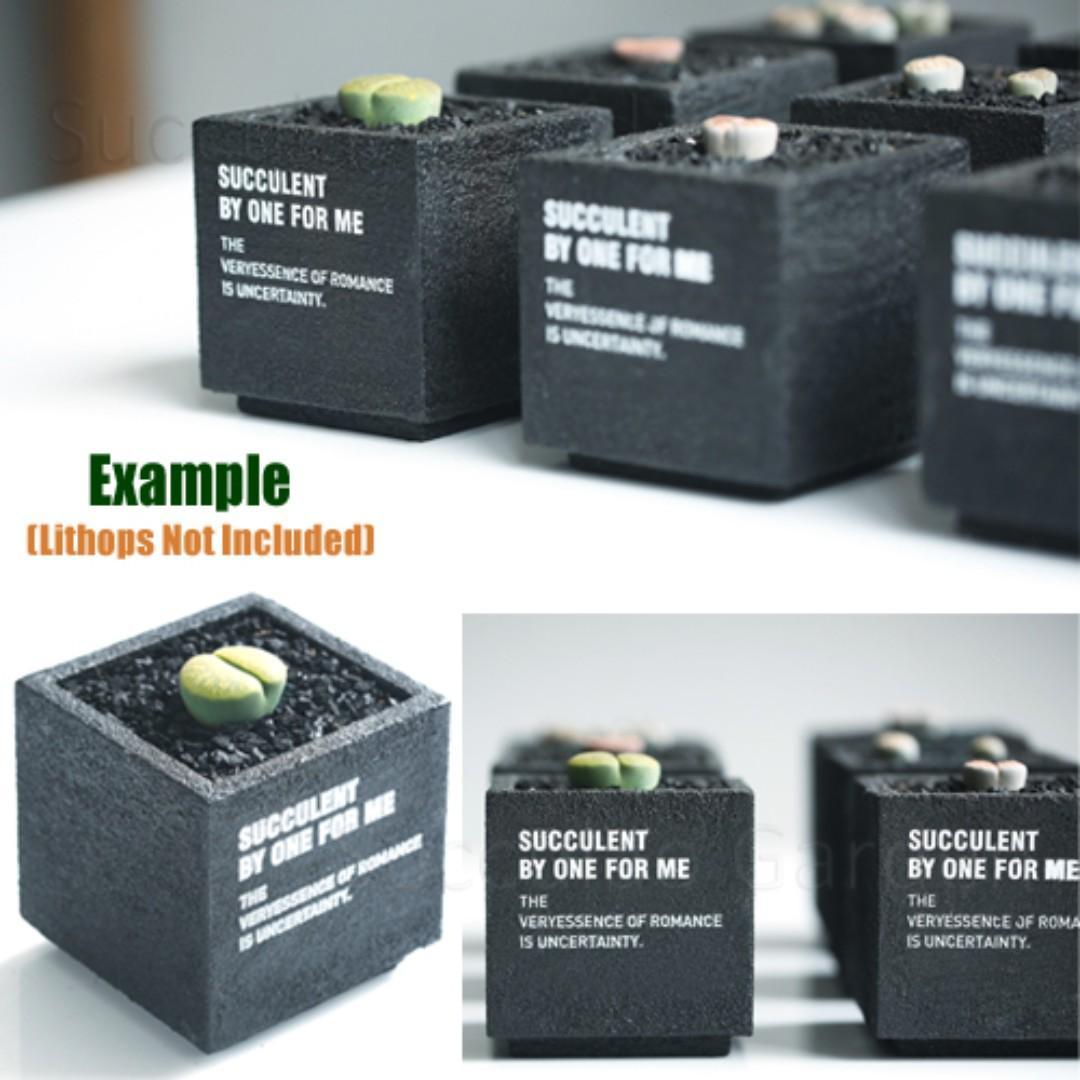 Black square pot / planter by One For Me. POFM0040