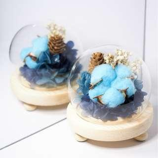 Preserved Flowers with Blue Cotton