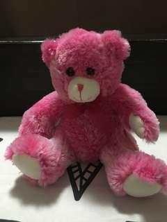 Pink Teddy Bear by Bench