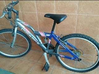 Used Mountain Bike For Sale