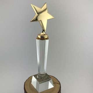 🚚 Star Crystal Trophy