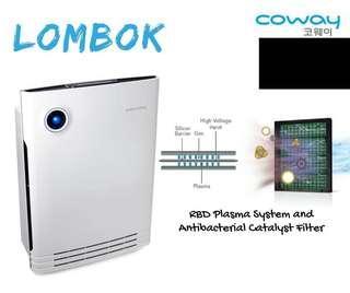 Air filter (Lombok ll)