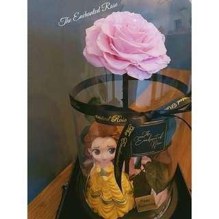Beauty & the Beast🌹Premium preserved rose in Illuminating light Glass Dome. Luxurious & beautiful, great as anniversary, birthday, proposal, graduation