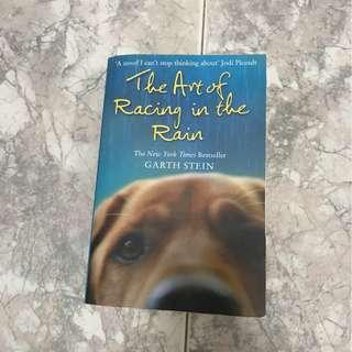 The Art of Racing In The Rain (Dog Story)