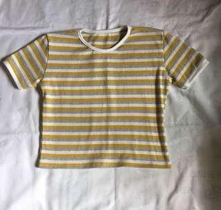 Repriced! Stripes Croppes Top