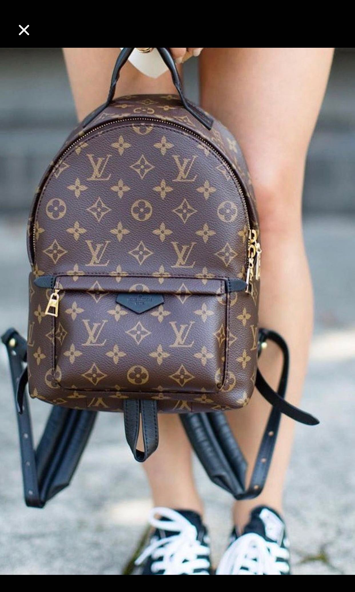 b7cc1e67a6d5 LV (Louis Vuitton) Palm Spring Bag
