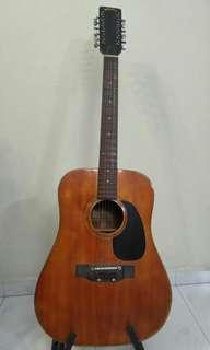 12 strings Guitar