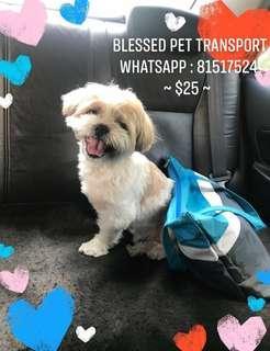 Blessed Pet Transport