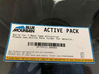 Blue Mountain ACTIVE PACK ( 4 tickets )