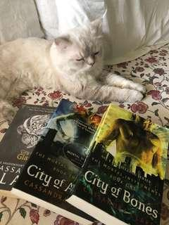 ✨ The Mortal Instruments Series