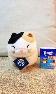 Cat 日本可愛小貓 😄💕