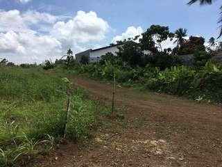 Silang Cavite Lots For Sale near Aguinaldo Highway