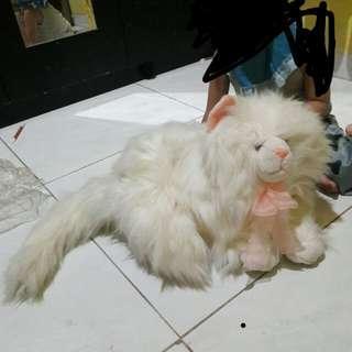 Boneka kucing