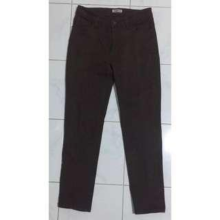 Pants dark brown
