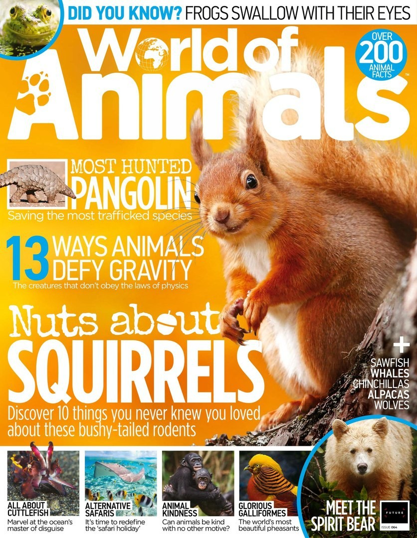 World of Animals - English   100 pages   True PDF   39 3 MB