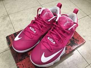 Nike Leborn AMBASSADOR IX