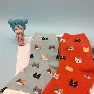 🚚 貓咪 襪子 二雙