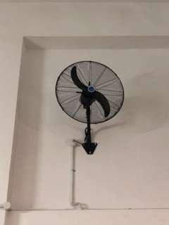 Big Wall Fan!!!