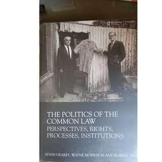 Law Book - The Politics of the Common Law, Perspectives, Rights, Processes, Institutions