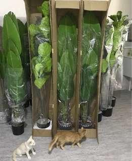 Artificial traveler plant  180cm (cash on delivery 😍)