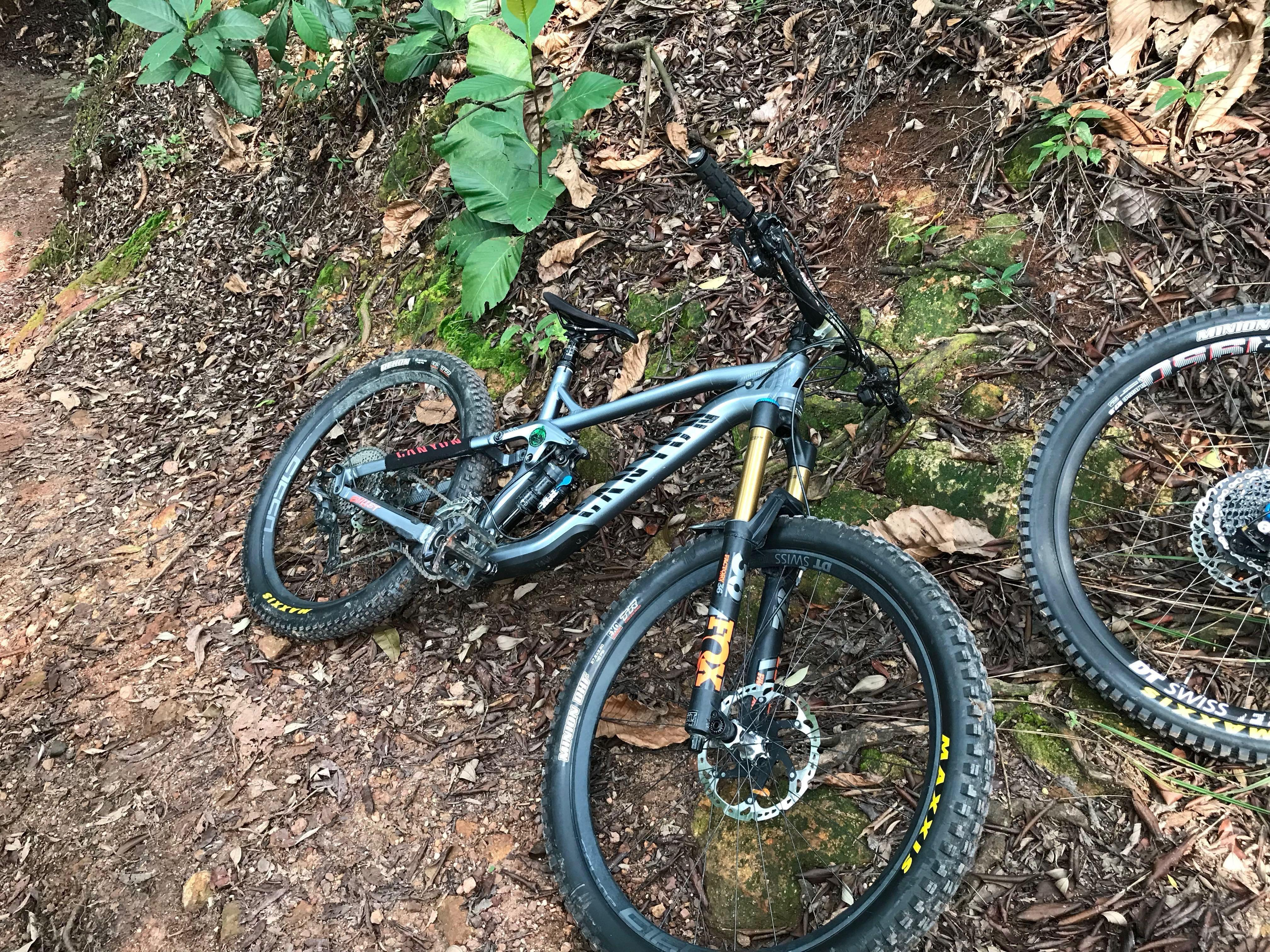 Canyon Strive AL 6 0 2017, Bicycles & PMDs, Bicycles