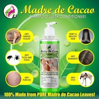 AE Madre De Cacao Shampoo Both For Human And Pets 250ml