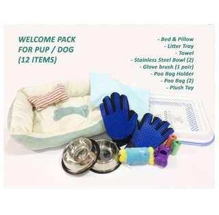 FREE DELIVERY- pup/dog welcome pack (accessories: bowl,brush, litter tray,bed)
