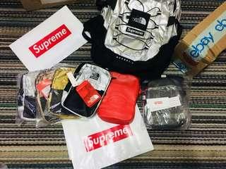 Supreme ss18 metallic north face