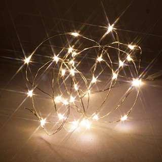 2M 20 LED Copper/Silver Wire Battery Operated Fairy Lights