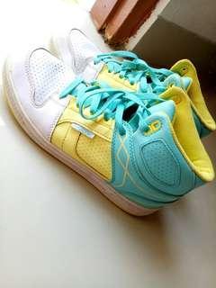 Sepatu tomkins