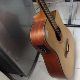 Acoustic guitar with pick up mint cond