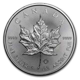 (多買有折) 本店最後現貨 包速遞 2017 加拿大楓葉 .9999銀幣1盎司 收藏投資首選 全新密封包裝 Canadian Silver Maple Leaf Coins