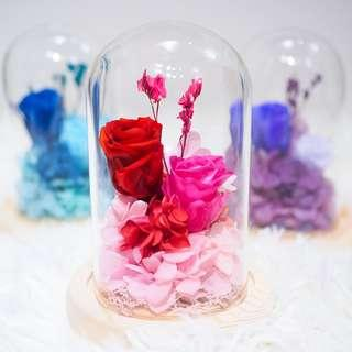 Red, Blue, Purple Preserved Preserved Rose Dome