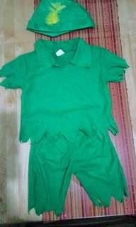 Robinhood / Peter Pan Costume