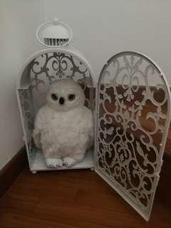 Hedwig owl and cage