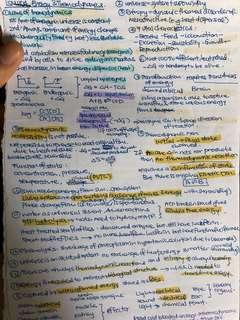 LSM1104 General Physiology