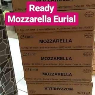 Jual Keju Mozzarella Eurial 10 kg