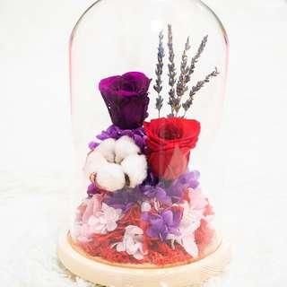 Red and Purple Preserved Rose with Cotton