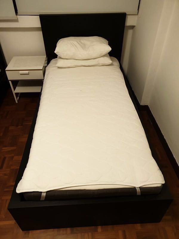 Ikea Malm single bed frame , Furniture, Beds & Mattresses on Carousell