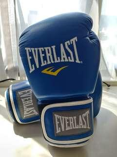 Everlast 14oz Leather Boxing Gloves