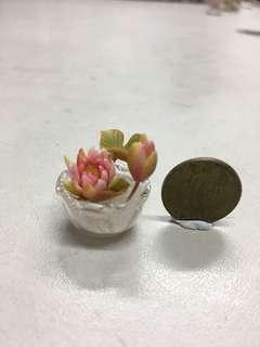 迷你荷花盆栽-黏土作品