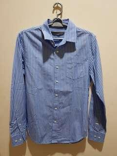 Giordano Blue Stripe Shirts
