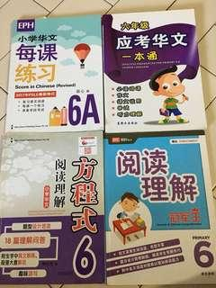P6 Chinese Assessment books