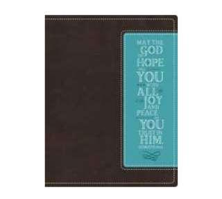 ~IN STOCK~ BN NIV Beautiful Word Bible, Leathersoft, Brown/Blue: 500 Full-Color Illustrated Verses