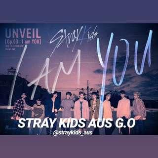 Stray kids I am You group order