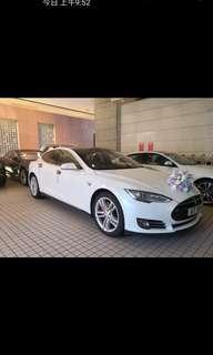 全新Tesla花車出租